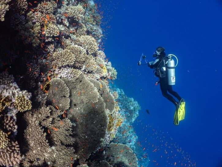 Scuba Travel, Simply the Best