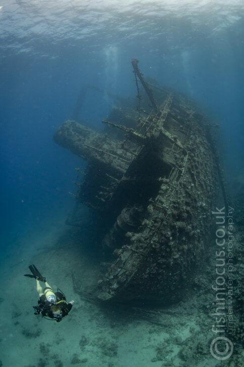 Scuba Travel, Giannis D, Red Sea, Egypt, Wreck