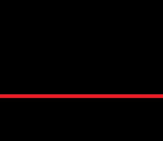 mike's dive cameras logo