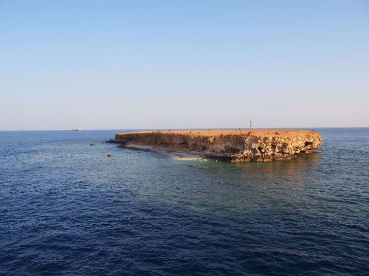 Little brother island / reef red sea