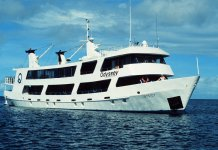 Scuba Travel, Truk Lagoon, Odyseey, Liveaboard