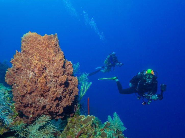 Scuba Travel, Belize,