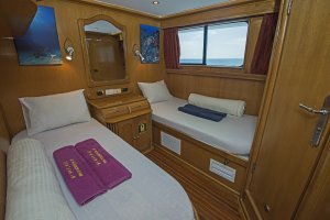Scuba Travel, Whirlwind,Cabin, Red Sea, Liveaboard