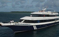 Belize Aggressor