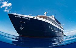 White Manta Explorer