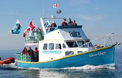 Ocean Quest Newfoundland