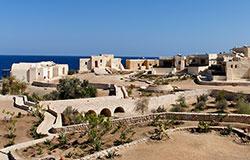 Sinai Divers & The Oasis resort Marsa Alam