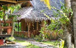 Oasis Resort & Seaquest