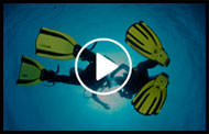 Indian Ocean diving movie