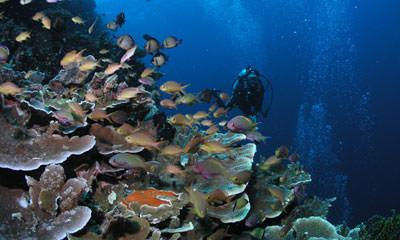 South Leyte