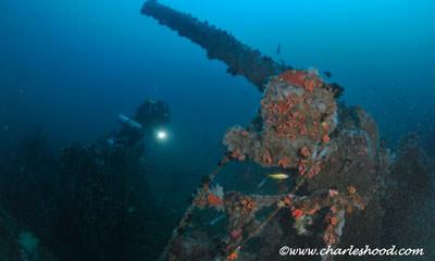 Red Sea Tek Week